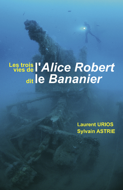3 vies de l'Alice Robert couverture