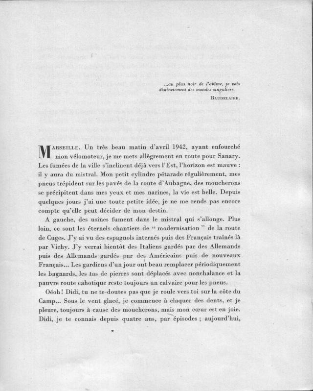 PAR 18 M DE FOND  AUTOUR D UN FI.JPG